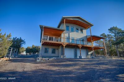 3254 OUTLAW TRL, Overgaard, AZ 85933 - Photo 2