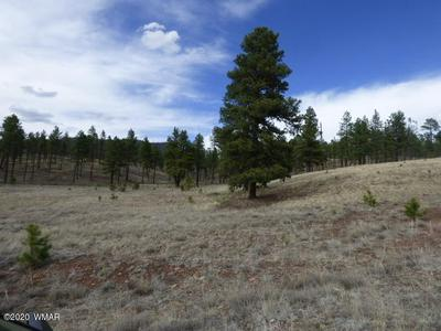 LOT 35 THE RANCH AT ALPINE, Alpine, AZ 85920 - Photo 2