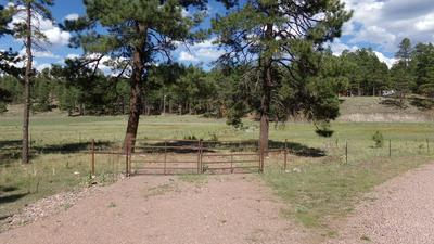 005J COUNTY RD. 2260, Alpine, AZ 85920 - Photo 2