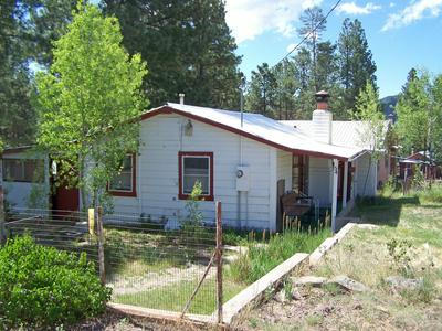 54 1ST ST N, Alpine, AZ 85920 - Photo 2