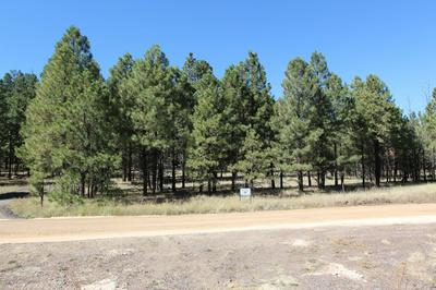 CR 1020 TRACT 1, Greer, AZ 85927 - Photo 1