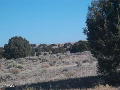 LOT 116 RIVER MEADOWS RANCH, Concho, AZ 85924 - Photo 1