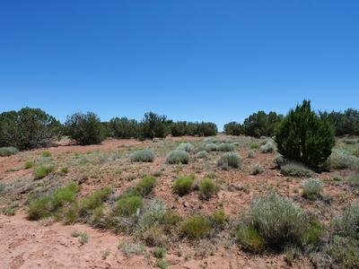 2971 W BRYANT, Snowflake, AZ 85937 - Photo 2