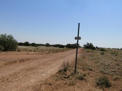 00 E COUNTY ROAD N5552 HIGHWAY, Concho, AZ 85924 - Photo 2