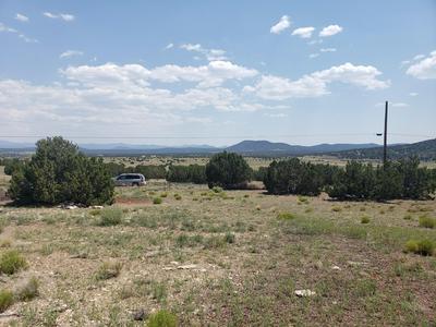 17 COUNTY ROAD 8002, Concho, AZ 85924 - Photo 2