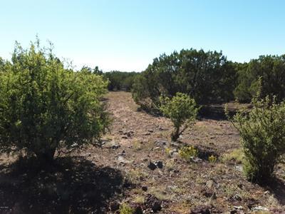 67 APACHE COUNTY RD 8114, Concho, AZ 85924 - Photo 2