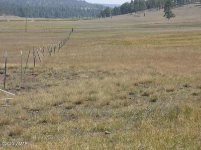5B ACR 2311, Alpine, AZ 85920 - Photo 2