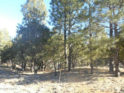 1496 SHADE TREE DR, Heber, AZ 85928 - Photo 1