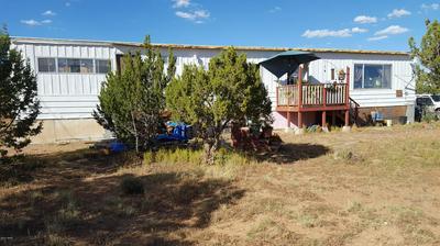 33 JAGUAR, Concho, AZ 85924 - Photo 1