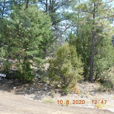 3333 SAWMILL RIDGE LOOP, Heber, AZ 85928 - Photo 2