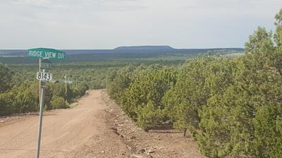44 MOUNTAIN PINE ROAD, Vernon, AZ 85940 - Photo 1