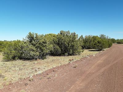 67 APACHE COUNTY RD 8114, Concho, AZ 85924 - Photo 1