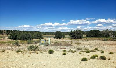 4 COUNTY ROAD 5704, Concho, AZ 85924 - Photo 2