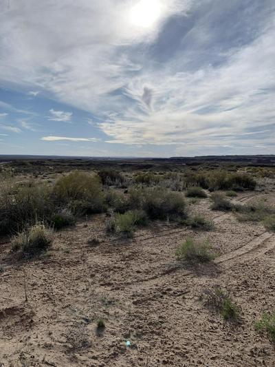 1705 W GREER AVE, Holbrook, AZ 86025 - Photo 2