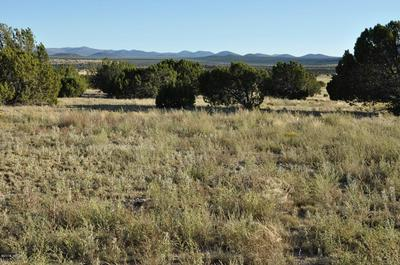 185D HWY 61, Concho Valley, AZ 85924 - Photo 1