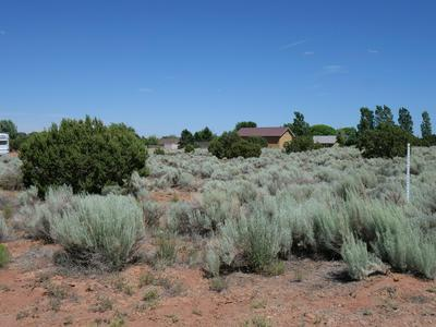 TBD OFF BOURDON RANCH ROAD, Taylor, AZ 85939 - Photo 2