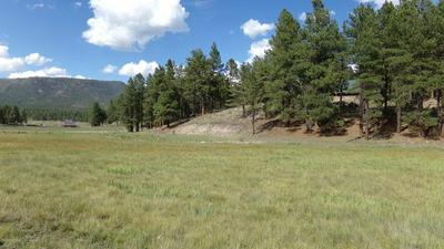 005J COUNTY RD. 2260, Alpine, AZ 85920 - Photo 1