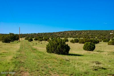 50 OLD RANCH RD, Quemado, NM 87829 - Photo 1