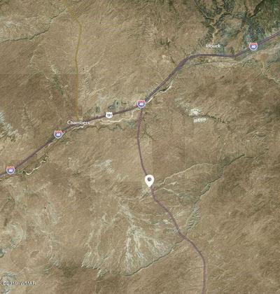 5 ACRES IN SEC 25 NEAR SANDERS, SANDERS, AZ 86512 - Photo 1