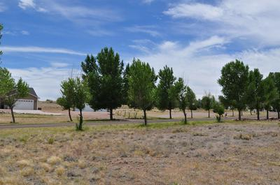 LOT 22 APPLE CIRCLE, Taylor, AZ 85939 - Photo 2
