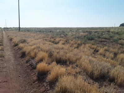 7720 QUARTZSITE ST, Holbrook, AZ 86025 - Photo 2