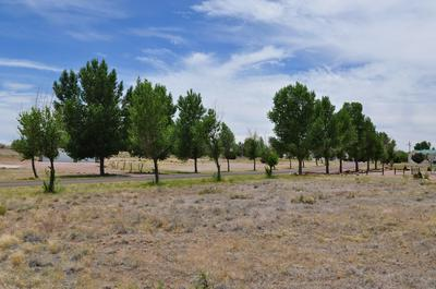 LOT 22 APPLE CIRCLE, Taylor, AZ 85939 - Photo 1
