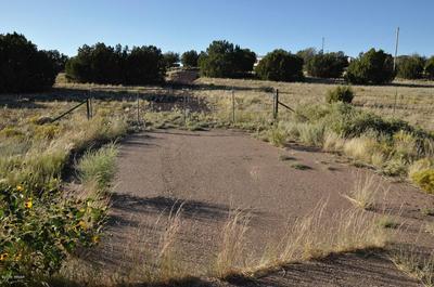 185D HWY 61, Concho Valley, AZ 85924 - Photo 2