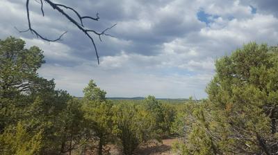 44 MOUNTAIN PINE ROAD, Vernon, AZ 85940 - Photo 2