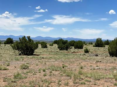 38 COUNTY ROAD 8648, Concho, AZ 85924 - Photo 2