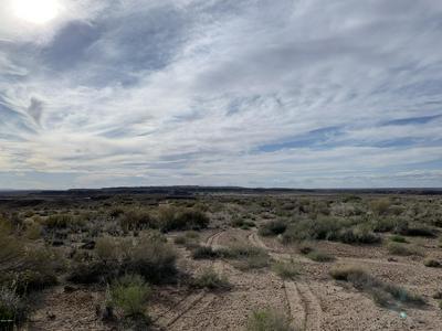 1705 W GREER AVE, Holbrook, AZ 86025 - Photo 1