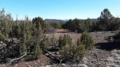 TBD 8221, Concho, AZ 85924 - Photo 1