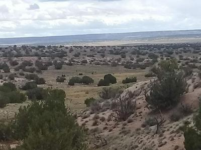 TBD ACR 7396, SANDERS, AZ 86512 - Photo 1
