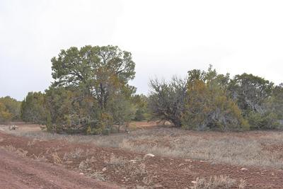 LOT 022K TRINITY WAY, Vernon, AZ 85940 - Photo 2