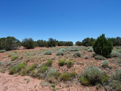 2971 W BRYANT, Snowflake, AZ 85937 - Photo 1
