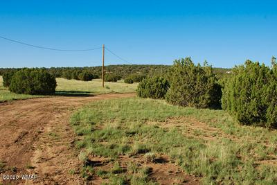 50 OLD RANCH RD, Quemado, NM 87829 - Photo 2