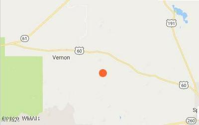 ---- -----, Vernon, AZ 85940 - Photo 1