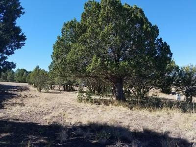 LOT 1 ELK CREST ESTATES, Eagar, AZ 85925 - Photo 1