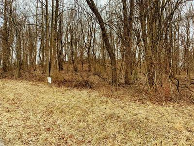 0 RIDGE AVENUE, White Township - Ind, PA 15701 - Photo 1