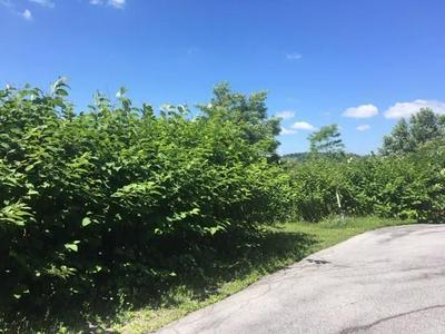 0 MASON DRIVE, Windber, PA 15963 - Photo 1