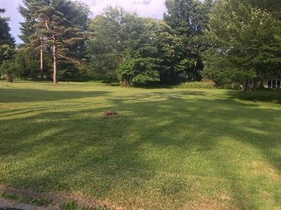 0 WHITE FARM ROAD, White Township - Ind, PA 15701 - Photo 1