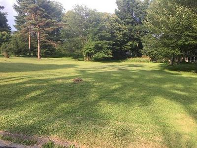 0 WHITE FARM ROAD, White Township - Ind, PA 15701 - Photo 2
