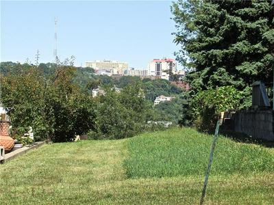 2415 LETICOE ST, Pittsburgh, PA 15203 - Photo 1