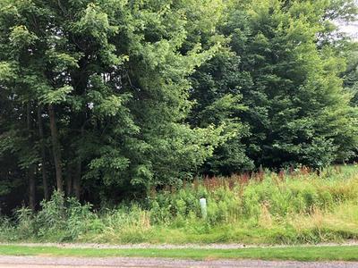 LOT 75 ANN CIRCLE, White Township - Ind, PA 15701 - Photo 2