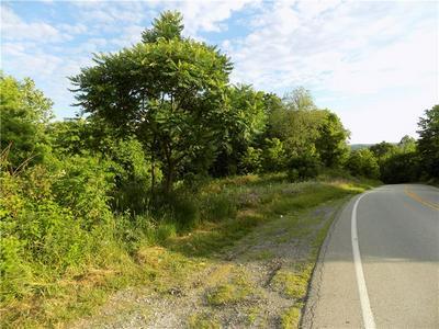 LOT 5 HARTLEY HILL ROAD, Adah, PA 15410 - Photo 2