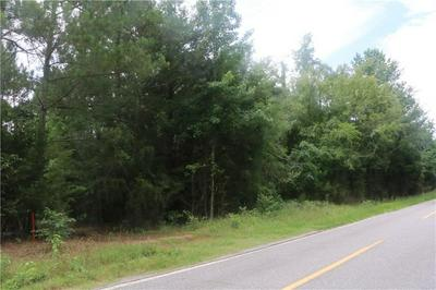 0 LAKE SECESSION ROAD, Iva, SC 29655 - Photo 2