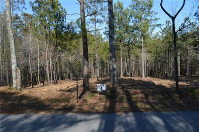 LOT 1 STOKES DRIVE, Seneca, SC 29672 - Photo 1