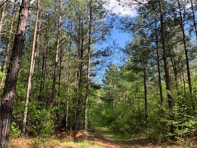 00 WILSON ROAD, Central, SC 29630 - Photo 1
