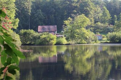 1211 HIGHWAY 107, MOUNTAIN REST, SC 29664 - Photo 2