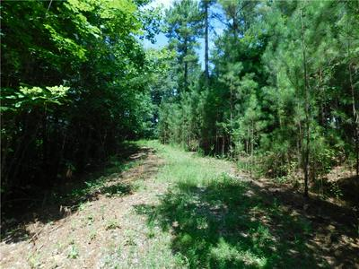 LOT 23 BIG CREEK WAY, Salem, SC 29676 - Photo 1
