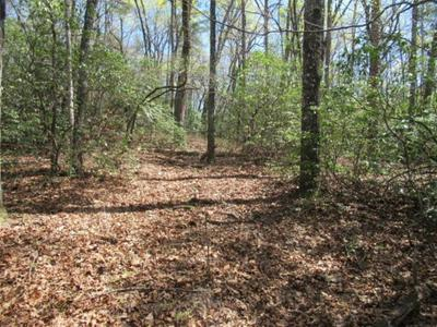 00 BROWN BOTTOM ROAD, Central, SC 29630 - Photo 1